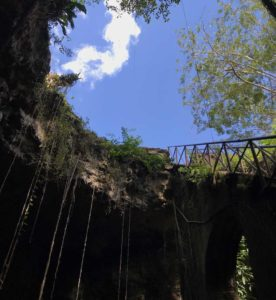 View of a Cenote from inside. Merida, Mexico. Visit Cenotes