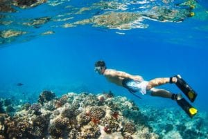 Young Man Snorkeling Underwater over Tropical Reef. Belize Vacation Package