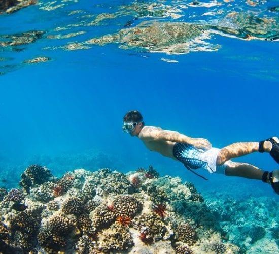 Young Man Snorkeling Underwater over Tropical Reef. Roatan Adventure Tour