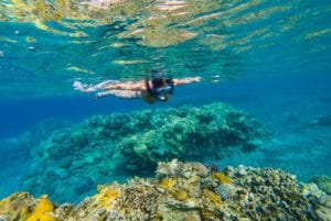 Underwater shot of a young woman snorkeling in tropical sea above coral reef. Belize Vacation Package