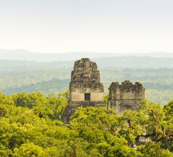 View from Temple IV in Tikal. View of the Jungle and temples II. Tikal Tour Package