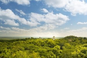 View of the Mayan ruins of Tikal and jungle from temple four, Guatemala. Maya Tours