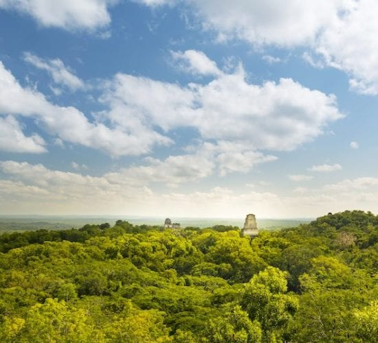 View of the Mayan ruins of Tikal and jungle from temple four, Guatemala. Reasons to visit Guatemala