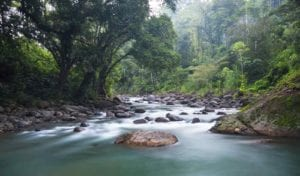 The Tscui River near the indigenous town of Yorkin in Talamanca, Costa Rica. Adventure in Costa Rica. Fifteen Reasons to travel Central America