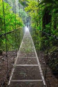 Handing Bridge in green jungle. Hikes in Monteverde. Central America.