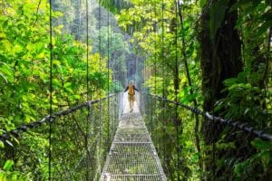 Hiking in hanging bridges of the green tropical jungle. Costa Rica. Adventure Tours Costa Rica.