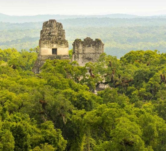 Mayan ruins rise above the jungle in the famous Tikal National Park, Guatemala. Tikal Trips