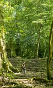 Woman alone exploring ancient jungle ruins. Guatemala.