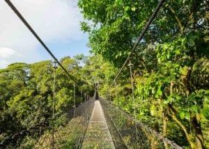 Hanging Bridge in green jungle, Costa Rica, Central America
