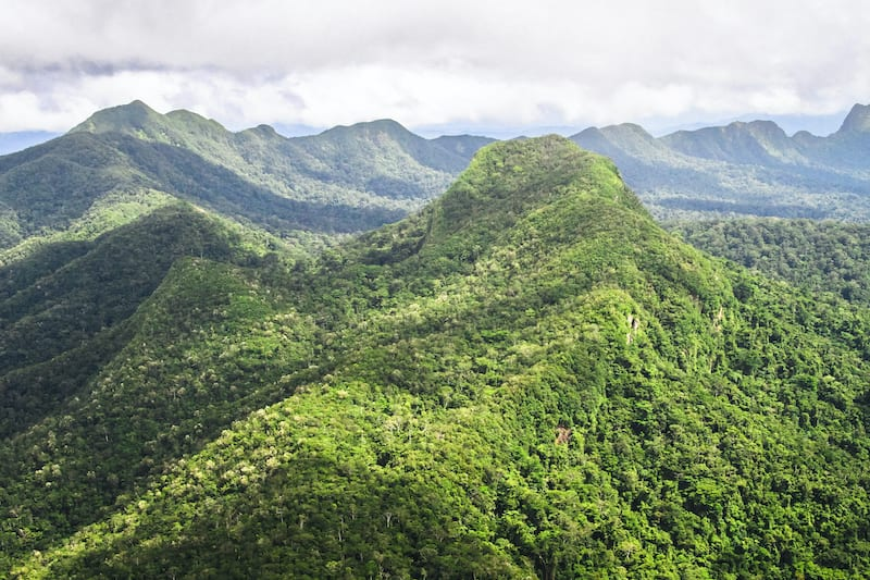 Mountains covered with pristine primary forest dominate the landscape in this aerial shot of the Cockscomb Basin. Belize. Altun Ha Ruins Tour