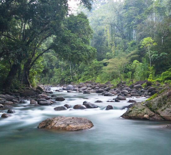 The Tscui River near the indigenous town of Yorkin. Costa Rica Tours